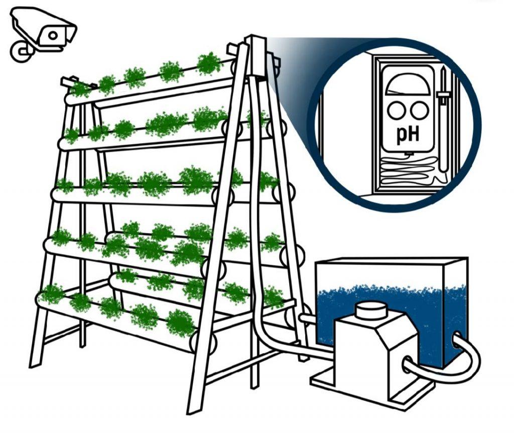 Skema sensor dan detektor yang diintegrasikan menggunakan artificial intelligence (AI) untuk komunitas kebun hidroponik