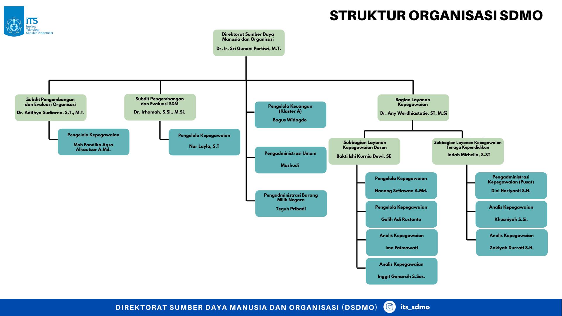 Struktur Organisasi SDMO